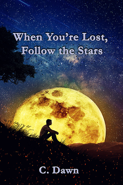 When You're Lost, Follow The Stars by C. Dawn