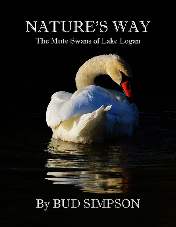 Nature's Way: The Mute Swans of Lake Logan, Ohio by Simpson