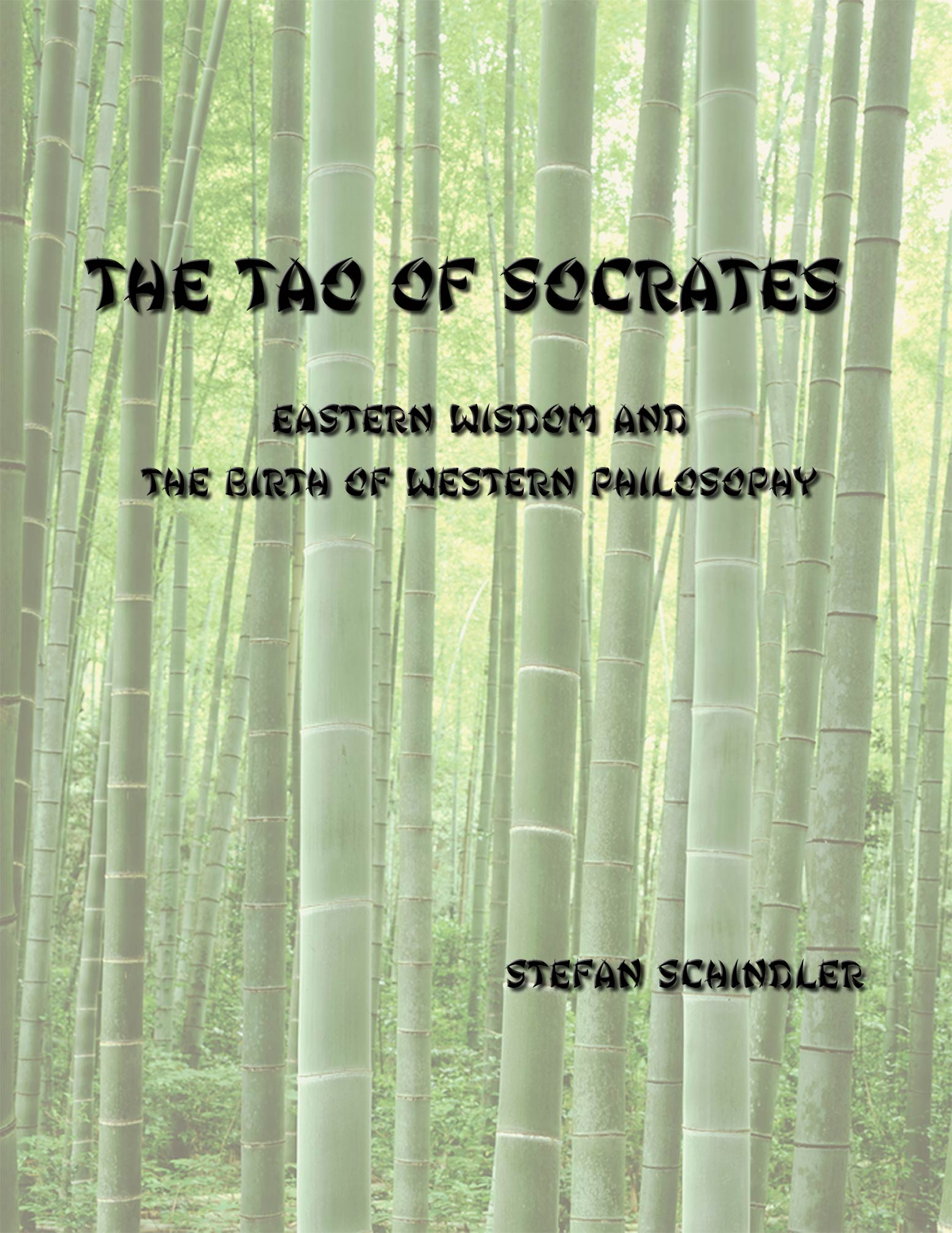 The Tao of Socrates by Stefan Schindler